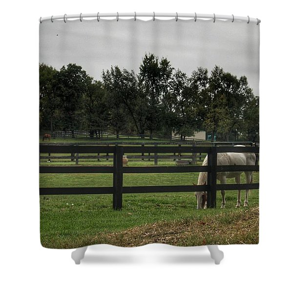 1004 - Beyond The Fence White Horse Shower Curtain