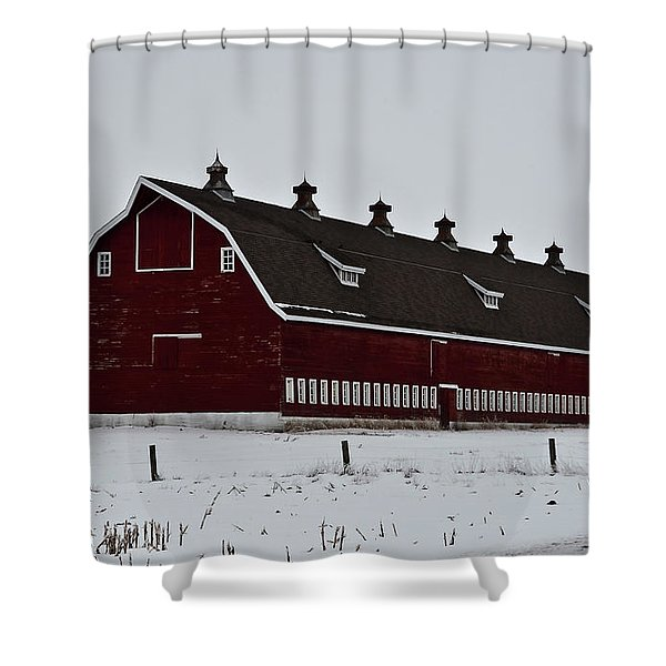 Big Red Barn In The Winter Shower Curtain