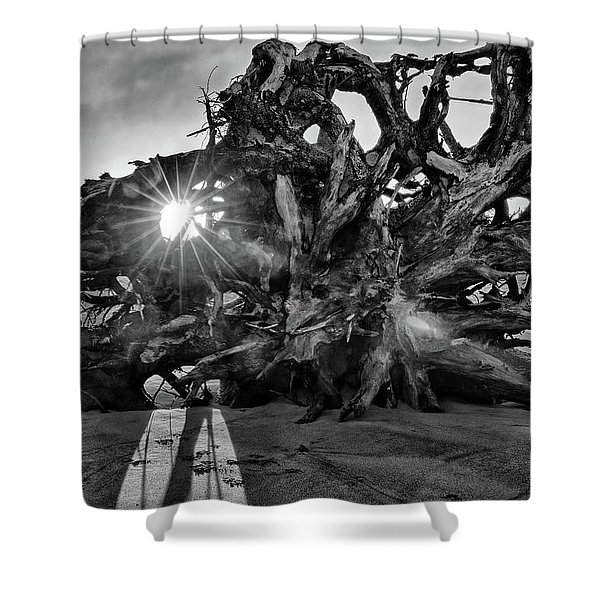 Big Tree On The Beach At Sunrise In Monochrome Shower Curtain