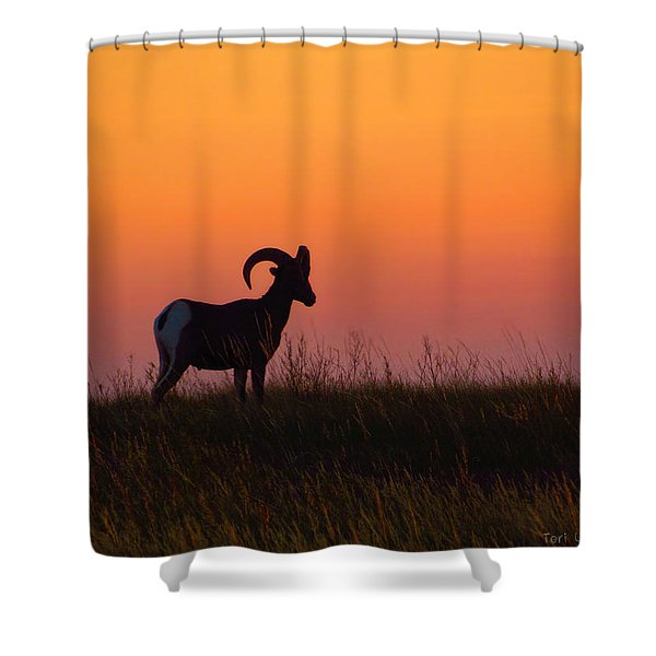 Bighorn Sunset Shower Curtain