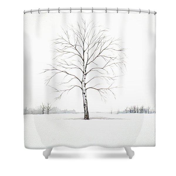 Birch Tree Upon The Winter Plain Shower Curtain