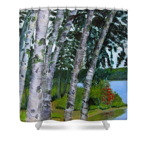 Birches At First Connecticut Lake Shower Curtain