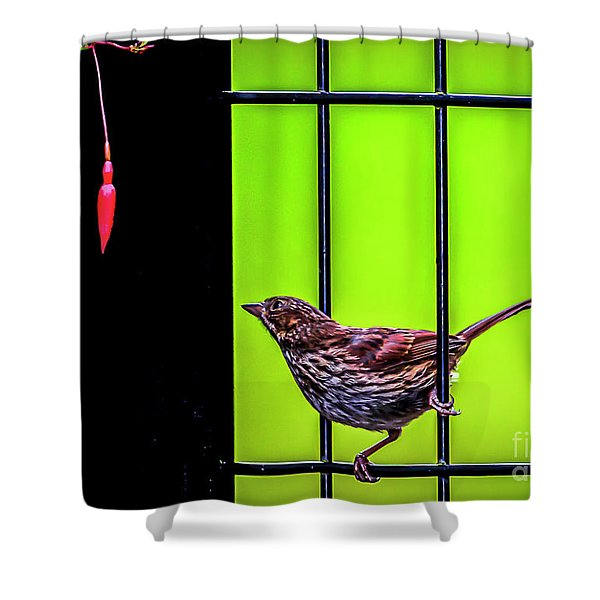 Bird And Red Fuchsia Flower Shower Curtain