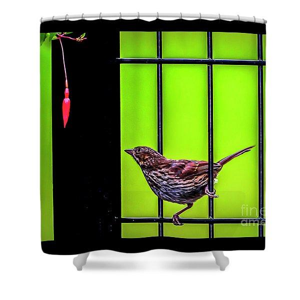 Bird And Red Fuchsia Flower Shower Curtain