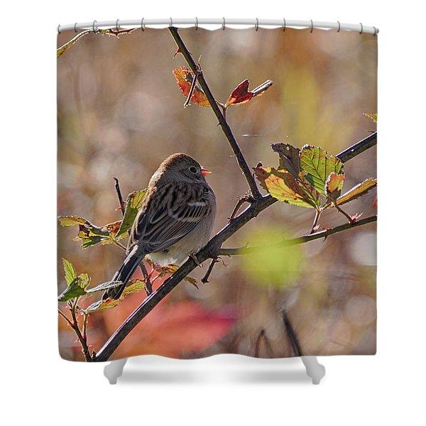 Bird In  Tree Shower Curtain
