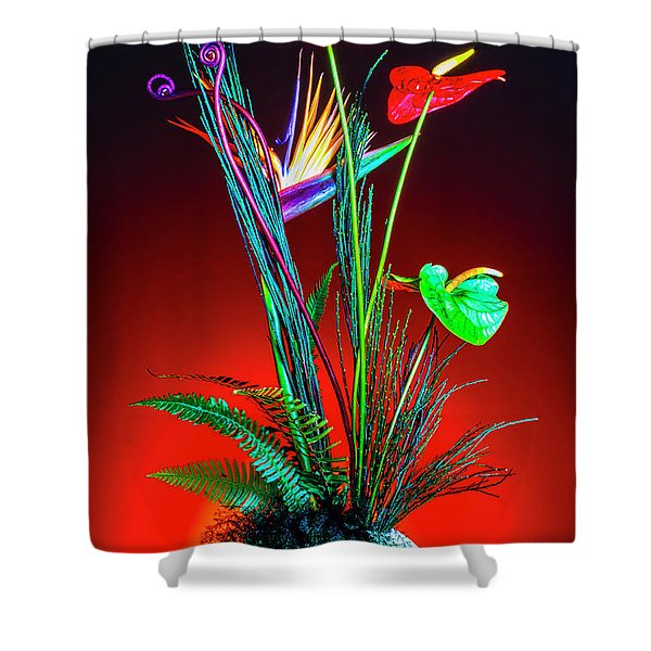 Bird Of Paradise And Anthuriums In Vase Shower Curtain