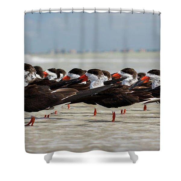 Bird Party Shower Curtain