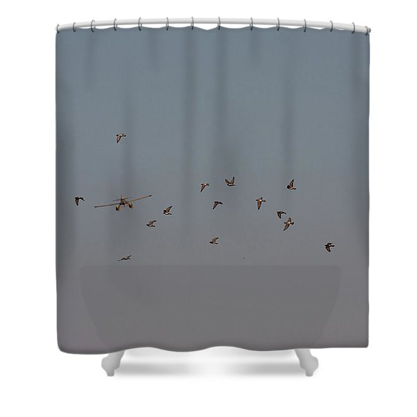 Birds And Airplane Shower Curtain