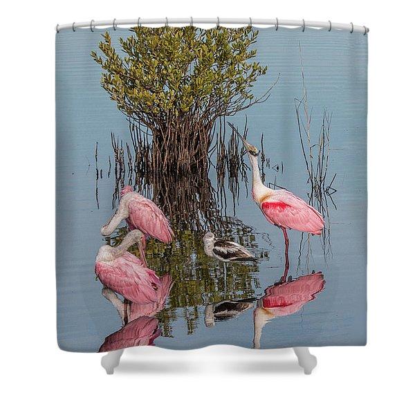 Birds And Mangrove Bush Shower Curtain