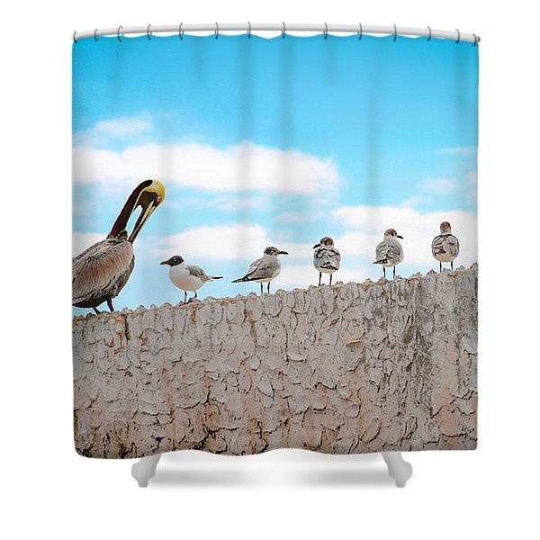 Birds Catching Up On News Shower Curtain