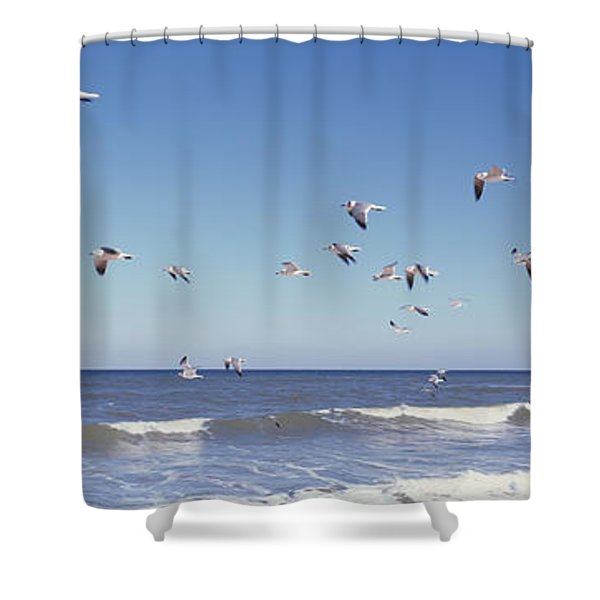 Birds Flying Over The Sea, Flagler Shower Curtain
