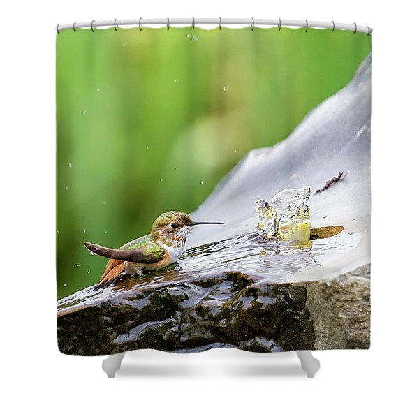 Birds Just Want To Have Fun Shower Curtain