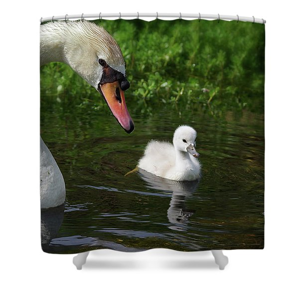 Birds Of Feather... Shower Curtain