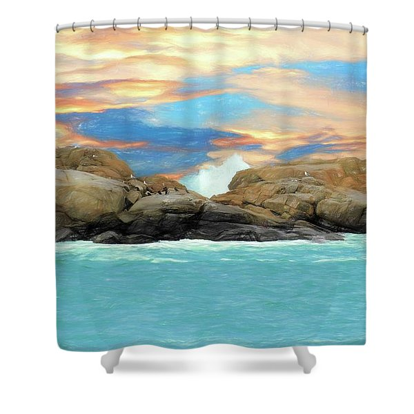 Birds On Ocean Rocks Shower Curtain