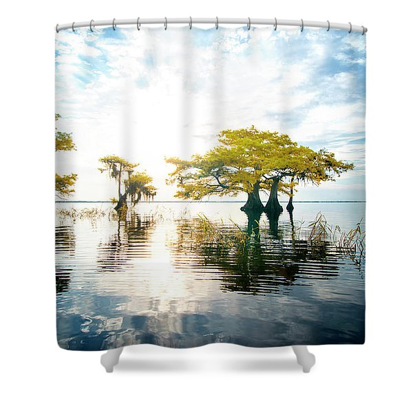 Birth Of Morning Shower Curtain