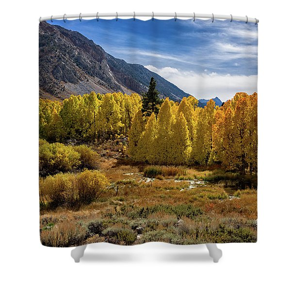 Bishop Creek Aspen Shower Curtain