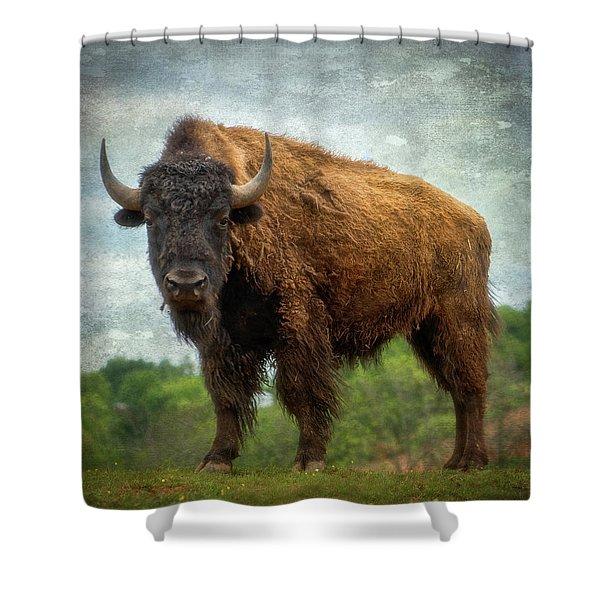 Bison 9 Shower Curtain