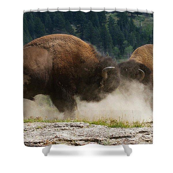 Bison Duel Shower Curtain
