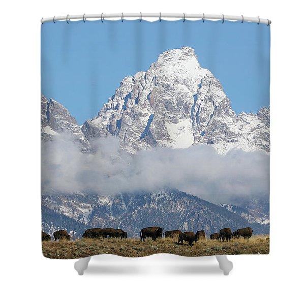 Bison In The Tetons Shower Curtain