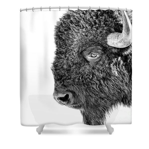 Bison Portrait Shower Curtain