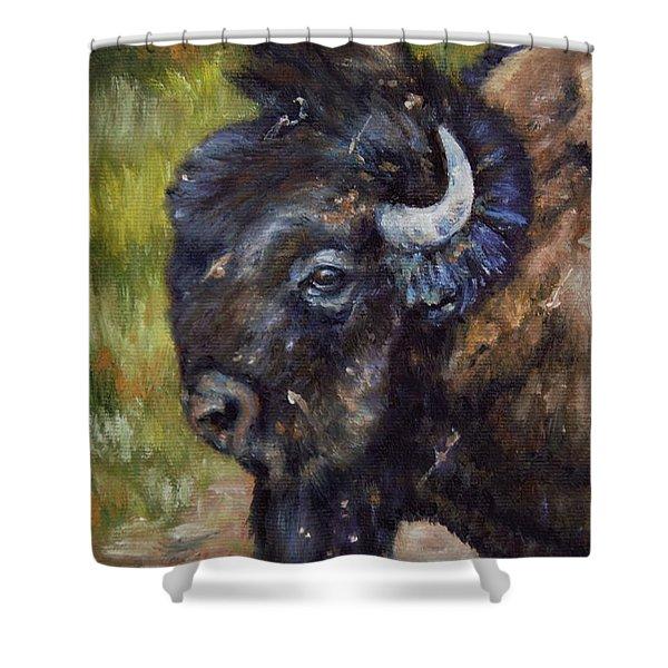 Bison Study 5 Shower Curtain