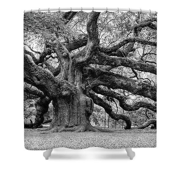 Black And White Angel Oak Tree Shower Curtain