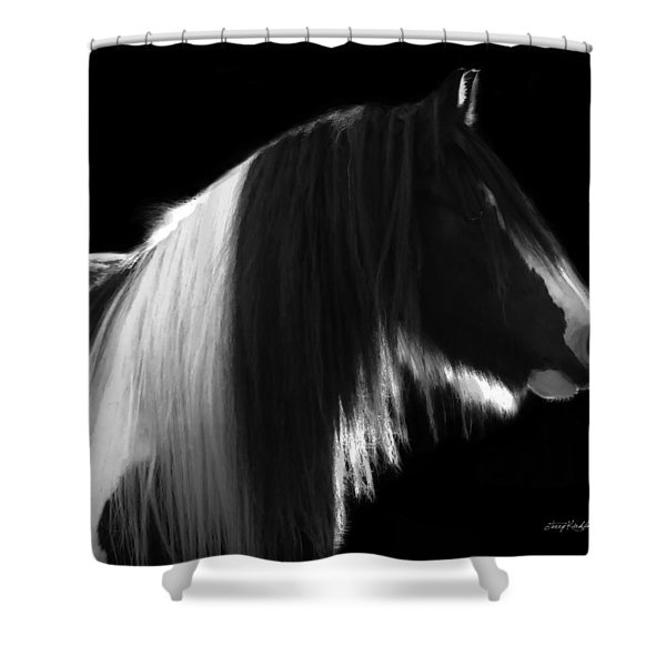 Black And White Mare Shower Curtain