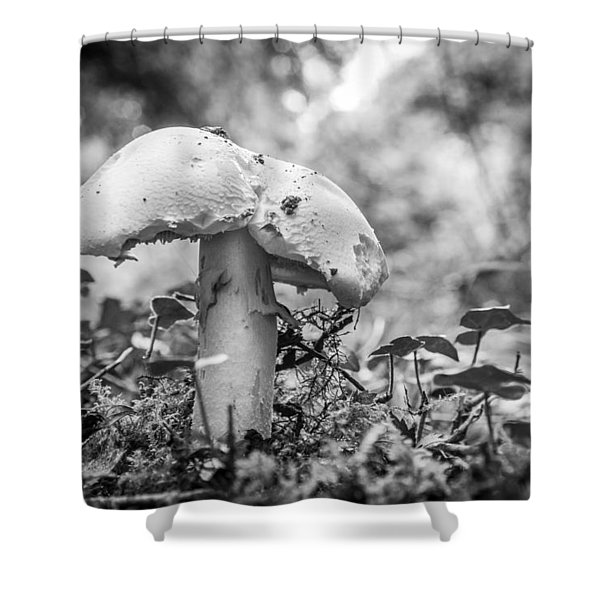 Black And White Mushroom. Shower Curtain