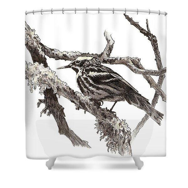 Black-and-white Warbler Shower Curtain
