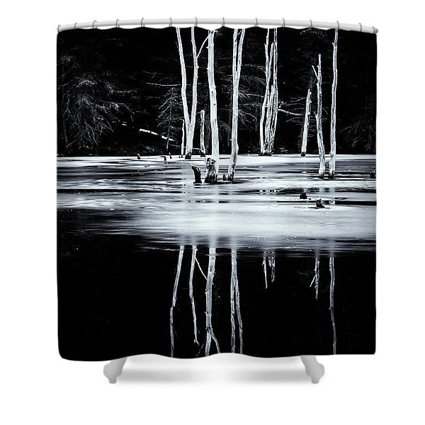 Shower Curtain featuring the photograph Black And White Winter Thaw Relections by Tom Singleton