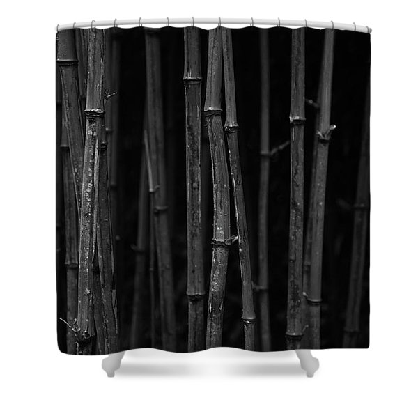 Black Bamboo Shower Curtain