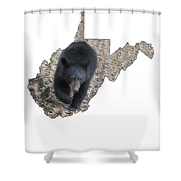 Black Bear Coming Close Shower Curtain