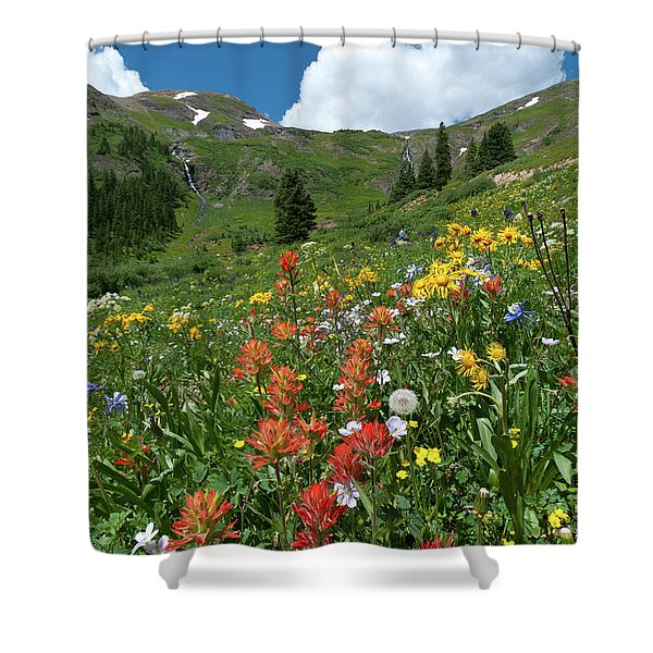 Black Bear Pass Landscape Shower Curtain