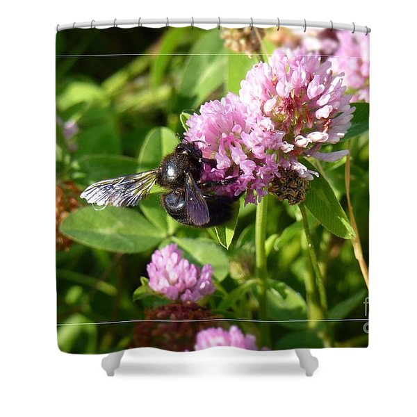 Black Bee On Small Purple Flower Shower Curtain
