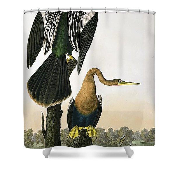 Black Billed Darter Shower Curtain