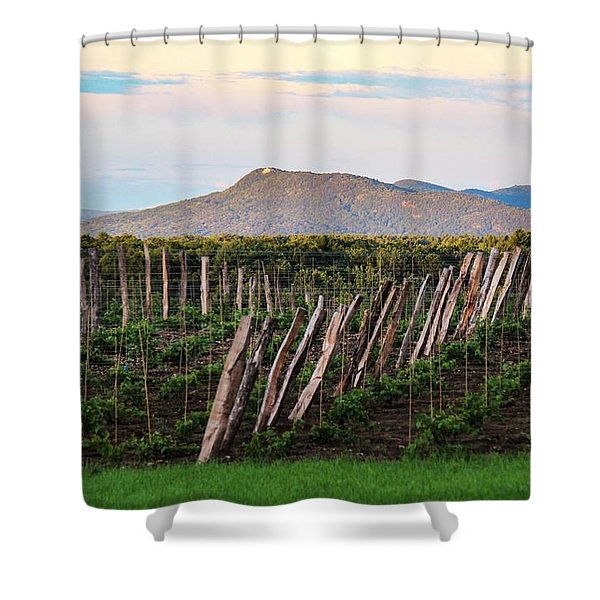 Shower Curtain featuring the photograph Black Birch Vineyard And Summit House View by Sven Kielhorn
