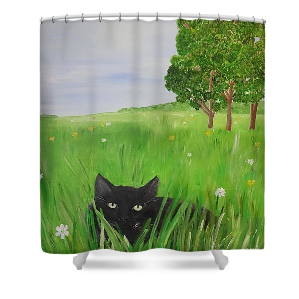 Black Cat In A Meadow Shower Curtain