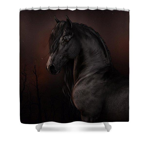 Black Dawn Shower Curtain
