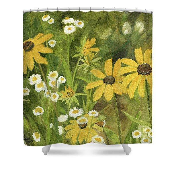 Black-eyed Susans In A Field Shower Curtain