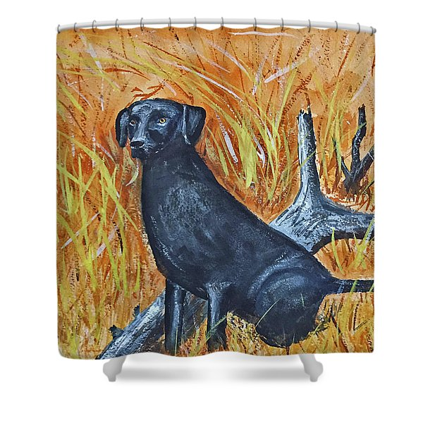 Black Lab-2 Shower Curtain