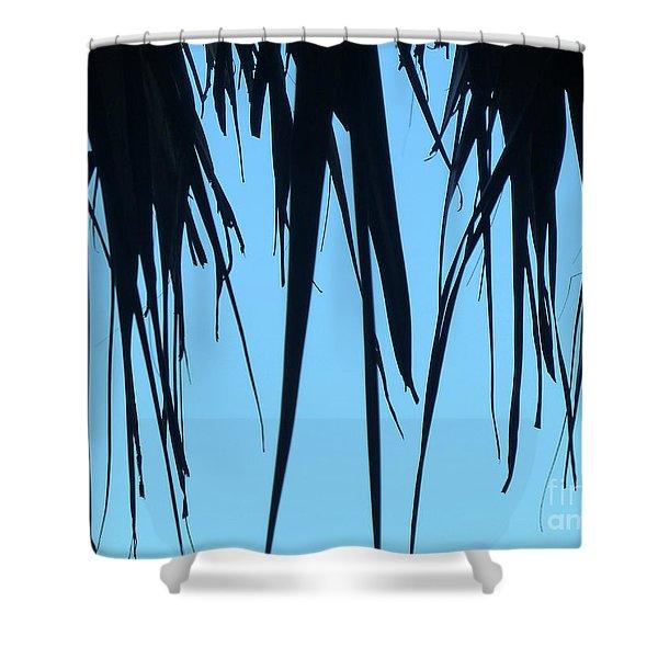 Black Palms On Blue Sky Shower Curtain