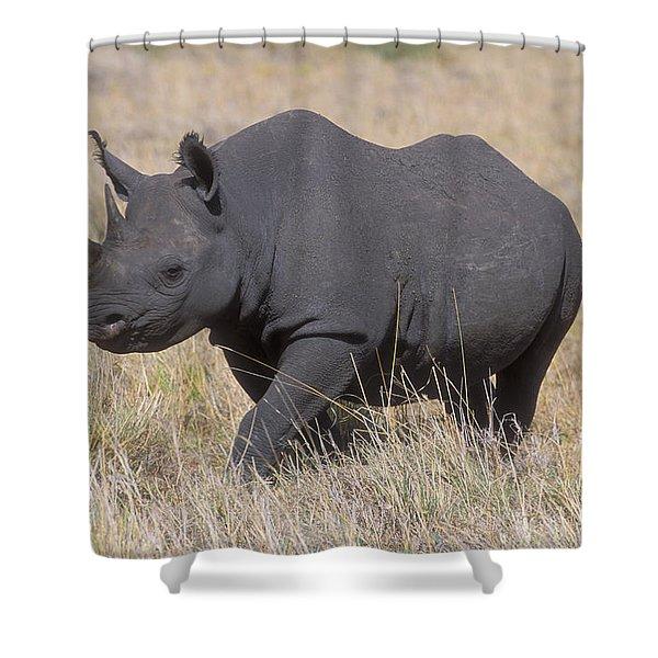 Black Rhino On The Masai Mara Shower Curtain