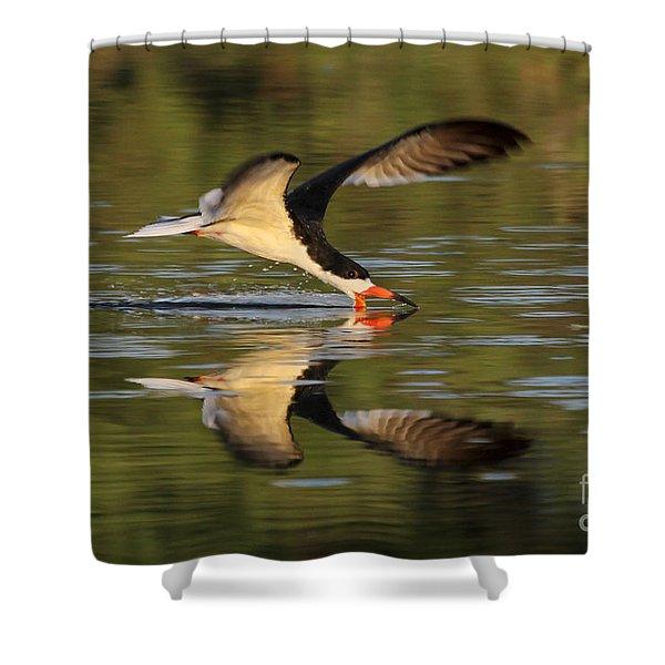 Black Skimmer Fishing Shower Curtain