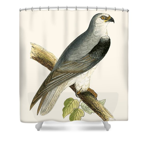Black Winged Kite Shower Curtain