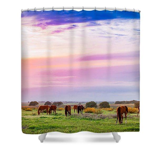 Blazing Sky Diner Shower Curtain