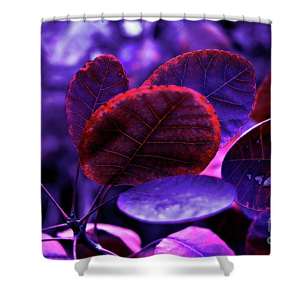Shower Curtain featuring the photograph Bleeding Violet Smoke Bush Leaves - Pantone Violet Ec by Silva Wischeropp