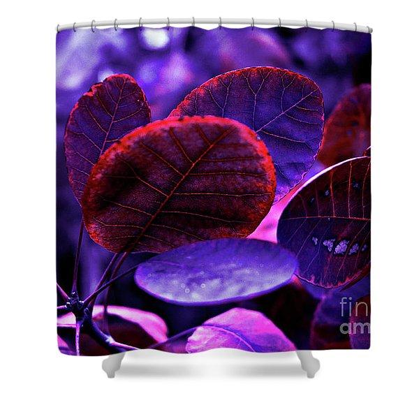Bleeding Violet Smoke Bush Leaves - Pantone Violet Ec Shower Curtain