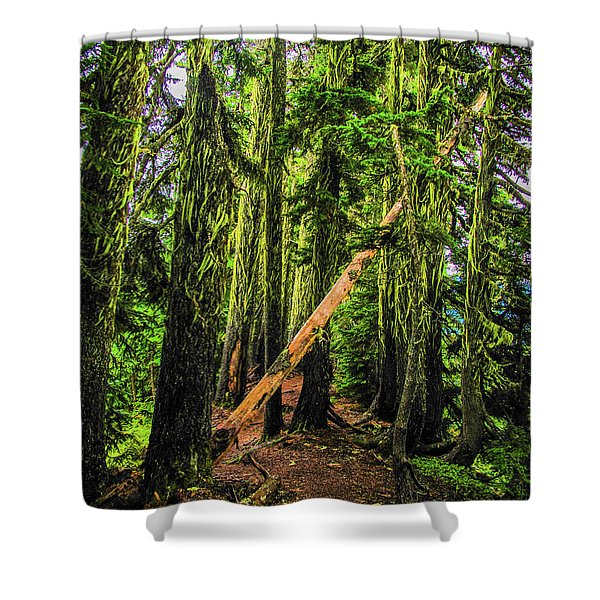 Blocked Trail Shower Curtain