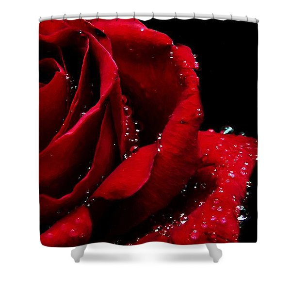 Blood Red Rose Shower Curtain
