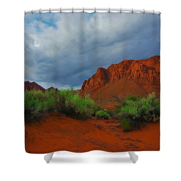 Blooming Desert Shower Curtain